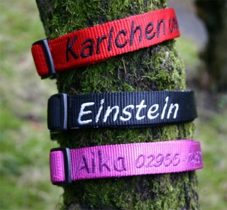 Nylon Hundehalsband Safety-Click, individuell bestickt!